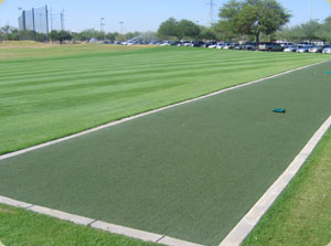 synthetic grass tee lines